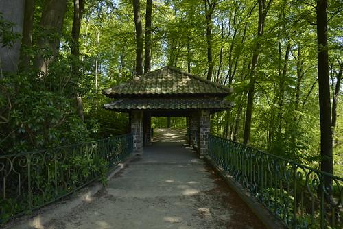 Chemin ombragé vers le petit abris chinois