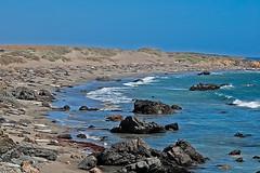 Monterey 0496-3-2 (jbillings13) Tags: ocean california sea beach rocks seal sansimeon elephantseal