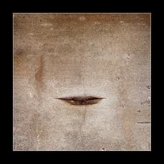 Lips (tkimages2011) Tags: stone durham stonework lips erosion weathered priory finchale