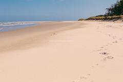 Curracloe beach, Wexford, Ireland (Luke Hasnotenough) Tags: ireland beach point raven wexford 2015 curracloe