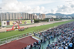 Racing Day. (bgfotologue) Tags: 2016 500px activity bgphoto course cup gambling hk hkjc hongkong horse image jockeyclub landscape outdoor photo photography public racecourse racing shatin bellphoto travel 戶外 攝影 比賽 沙田 港 賽馬 跑馬 風景 香港 馬 馬場 馬會 newterritories