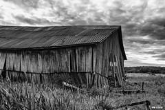 old barn (P. Marion) Tags: barn hangar grange quebec canada pm marione nikon d810 raw black noir zwart schwarz negro white blanc wit weiss blanco blackandwhite noiretblanc zwartenwit monochrome bw nb zw mono bandw netb zenw blackwhite noirblanc zwartwit schwarzweiss negroblanco