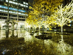 All I Want (retroSPecktive) Tags: light night city reflection rain wet manhattan nyc new york