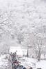 DSC_9702 (Megumi Nakamoto) Tags: nikon japan gihu shirakawagou snow nature winter bridge white 日本 岐阜県 白川郷 冬 雪 橋 自然
