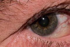 Corner of my eye...a macro selfie (Fred Roe) Tags: lca81a6572 nikond810 nikonafsmicronikkor105mmf28 macro eye macromondays corner