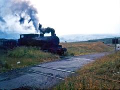 NCB 24 Waterside colliery (shipcard) Tags: ncb24 nationalcoalboard andrewbarclay industrial steam locomotive waterside pennyvenie dalmellington colliery 2335 sidetank scotland