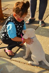 Everything stops when a puppy is near (radargeek) Tags: dayofthedead plazadistrict okc oklahomacity 2016 facepaint puppy child