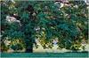 Les paysages de Puisaye-Forterre (Office de Tourisme de Puisaye-Forterre) Tags: paysage bourgogne yonne nièvre puisaye puisayeforterre bourgognebuissonière