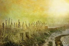 Foggy winter sunrise. (sidibousaid60) Tags: uk winter mist snow grass fog photoshop sunrise buxton derbyshire textures corelpainter fairfild