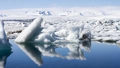 Spring In Iceland (Julien Ratel ( Júllí Jónsson )) Tags: white nature canon iceland spring awakening may glacier mai destination popular wandering ísland icebergs islande glacierlagoon canon1022 jökulsarlon eos7d blueju38 julienratel julienratelphotography blueju destinationislande