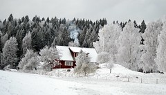 winter red (Maja Portström) Tags: winter white snow ice fairytale sweden redhouse swedishwinter