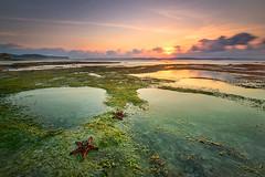 tale of two siblings (Mk Azmi) Tags: seascape nature indonesia nikon lombok ekas d800 singhray rgnd