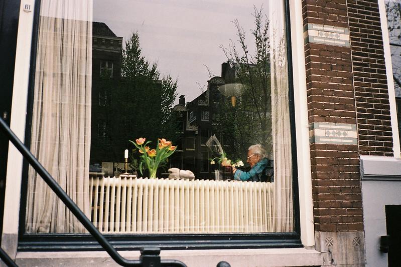 Show Window.