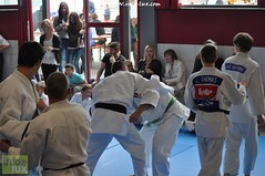 Judo-habay076
