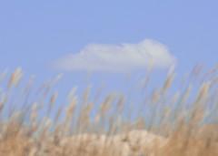 Tesoro nº6: Nubes (Monica Fiuza) Tags: sky cloud beach clouds landscape ana alicia dunes playa galicia alberto cielo nubes nube dunas sanvicente niños mnica monicayquique