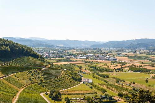 Vue sur Gengenbach depuis le Château d'Ortenberg