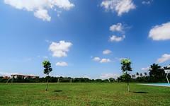 Padang& Langit 1280x800 (Awang Marjokni) Tags: field padang rumput 1280x800