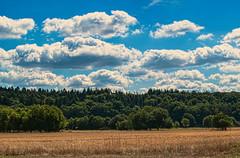 Primsaue (s.lang534) Tags: nature sommer natur feld himmel wolken landschaft saarland acker schmelz prims olympuse520