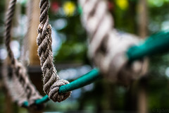 Wobbly bridge (tgden) Tags: bridge green colours dof bokeh rope 7d playpark 2015
