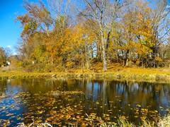 IMG_9145 (rpealit) Tags: scenery wildlife nature east hatchery hackettstown