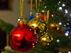 Lichter / Lights (schreibtnix on 'n off) Tags: deutschland germany weihnachten christmas weihnachtsbaum christmastree christbaumkugel christmastreeball rot red gold spiegelungen reflections lichter lights nahaufnahme closeup olympuse5 schreibtnix