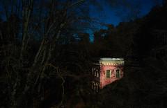 Pantano de Valvidrera. Barcelona (Usitu) Tags: naturaleza oscuridad bosque colores contraste