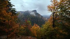 End of Autumn (Lukas Krasa) Tags: autumn fall colors landscape 14mm samyang canon 5d mk mark iii czech republic atmosphere mist fog lukaskrasacom