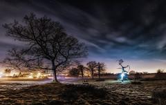 Running? (Rob Pitt) Tags: rivacrevalley cheshire lightpainting led lights surreal nik google hss mist