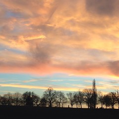 Sunset Hilly Fields (msganching) Tags: silhouette hillyfields sky dusk sunset trees lewisham london