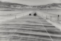 crossing paths... (Alvin Harp) Tags: windy blowingsnow wyoming movement winterdriving december 2016 bw blackandwhite mono monochrome sonyilce7rm2 fe24240mm alvinharp