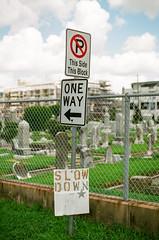 50220016 (alexdotbarber) Tags: 12800 35mm c41 carlzeissplanart50mmf14 contaxaria fujireala100 houstonfourthward slr cemetery colornegative f2 oneway onewaysign slowdown