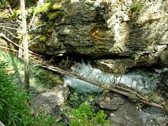 DSCN0427 (12fh) Tags: canada alberta nationalpark johnstoncanyon rockies banffnationalpark creek canyon