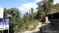 P1100995 Signpost show the way to Mardi FC - but we stick to decision of dropping Mardi Himal (ks_bluechip) Tags: nepal trek dec2016 annapurna abc mbc landruk tolga pitamdeorali pothana