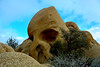 Joshua Tree National Park - California -Skull Rock (Feridun F. Alkaya) Tags: joshuatreenationalpark joshua nature ngc park desert cactus california tree trees nationalpark national mount wild skullrock rocks geology
