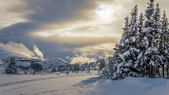 Ski Hill Sunlight (mnenson) Tags: naturalphenomena winter nature mountains snow trees seasons banffnationalpark skies lighting alberta canada sky sunlight environment places plant plants landscapes