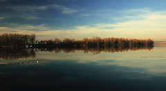 (tozofoto) Tags: europe hungary tozofoto landscape lake water waterreflection winter trees sky shadows lights colors canon travelling travel holiday clouds