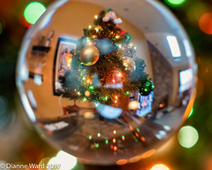 02/365 Crystal Ball (Tewmom) Tags: bokeh light crystalball orb reflections holiday home 365the2017edition 3652017 day2365 2jan17