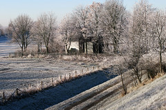 on a sunny winter morning (j.p.yef) Tags: peterfey jpyef yef landscape seasons winter trees snow germany deutschland landschaft schnee