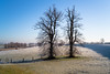 Dike at Düffelward (martinstelbrink) Tags: dike dyke deich althrein oldriverarm rhine rhein rhineriver tree trees baum bäume winter ice reif raureif morgen morning düffelward germany nrw nordrheinwestfalen sony alpha7rii a7rii voigtländervmeclosefocusadapter leicasummicron35mmf20preasph leicasummicron35mmf20i leica summicron 35mm f20 preasph