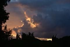 Shining light (Dreaming of the Sea) Tags: nikon d7200 dusk twilight clouds storm tamronsp2470mmf28divcusd trees topf25 sunset 1000v40f tamron2470mm 1500v60f