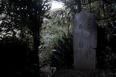 Poneglyph in Enoshima(江の島のポーネグリフ) (daigo harada(原田 大吾)) Tags: poneglyph stone text enoshima 江の島 石碑 ポーネグリフ