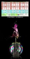 GlimpseCatcher - Daniel Maillard (GlimpseCatcher) Tags: glimpsecatcher daniel maillard waterdropphotography