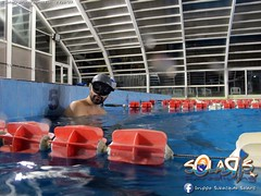 """02 febbraio 2017 - Prove sub & Freediving... • <a style=""""font-size:0.8em;"""" href=""""http://www.flickr.com/photos/138167729@N03/32659383651/"""" target=""""_blank"""">View on Flickr</a>"""