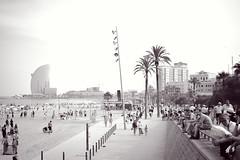 Barceloneta (Silvia Sommadossi) Tags: barcelona trip travel sea people sun beach mar spain mare playa palm journey catalunya palme viaggio spiaggia barcellona whotel spagna catalogna