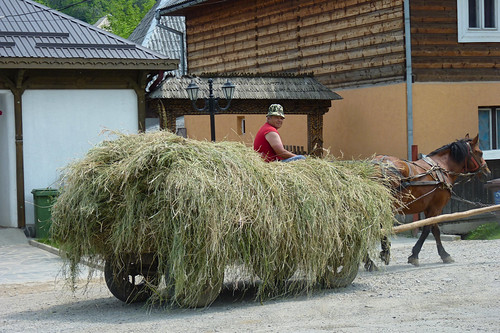 Budesti - hay cart