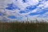 Himmel und Erde (Andy von der Wurm) Tags: sky nature field clouds germany landscape deutschland europa europe outdoor feld wolken minimal alemania nrw landschaft allemagne nordrheinwestfalen northrhinewestfalia grasland heavenandearth geilenkirchen puristic puristisch kreisheinsberg himmelunderde