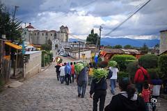 Ixtlan de Juárez, Oaxaca (Kios Photography) Tags: naturaleza nature oaxaca sierrajuarez fotografo ecoturismo sierranorte ixtlan ixtlandejuarez ecoturixtlan kiosgarcia kiosphotography