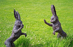 rabbits or hares (brianmcg89) Tags: rabbit statue bronze high hare five highfive boxing