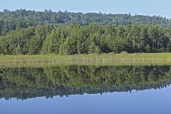 In Madawaska (Sylvie Poitevin Photography) Tags: lake ontario madawaska