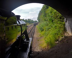 Great Central Railway Leicester Leicestershire 2nd August 2015 (loose_grip_99) Tags: uk railroad england train leicestershire engine rail railway august trains steam transportation locomotive railways preservation 280 lms greatcentral 2015 8f stanier uksteam 48624 gassteam